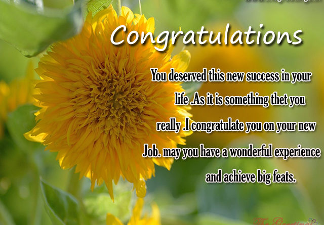 congratulations for job promotion quotes - The Greetings